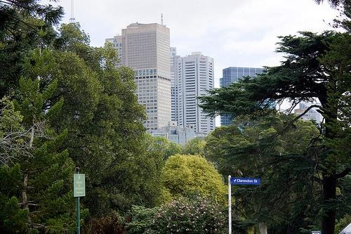 Melbourne skyline from Fitzroy Gardens