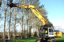 Hyundai Excavators Play a Supporting Role in Thriving Forestry Business